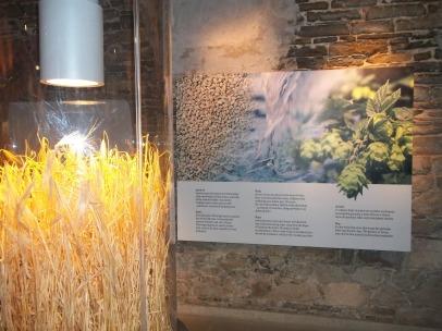 Zywiec Brewery Museum - CLUE 3