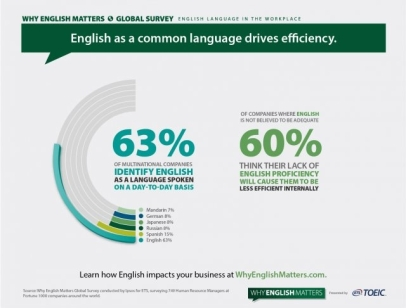 English as a Common Language Drives Efficiency